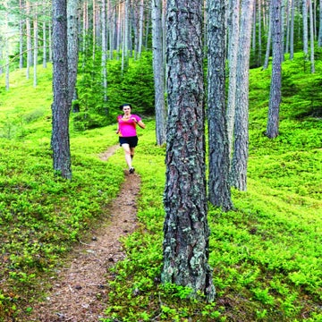 10K Trail Race Training Plan