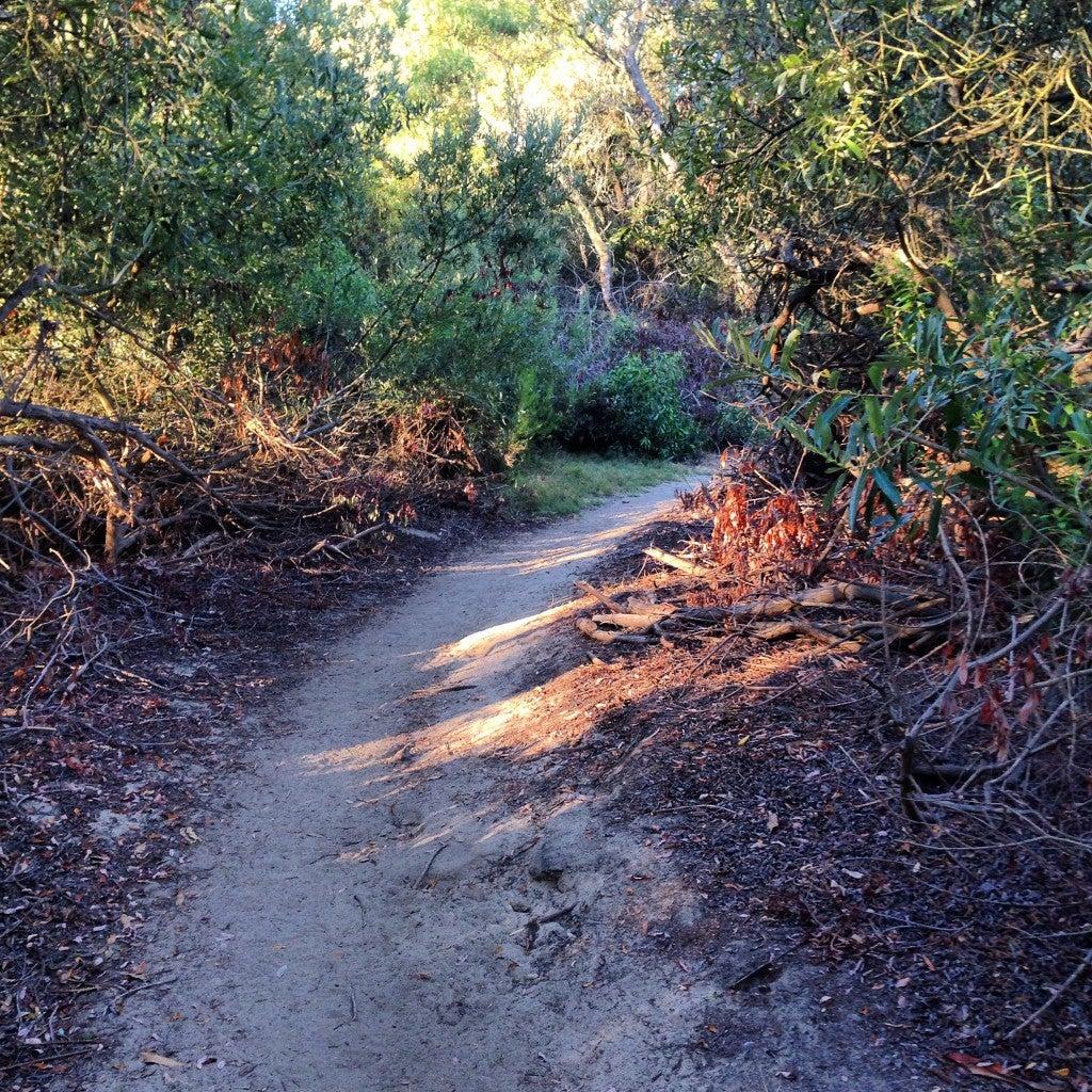Cait trail