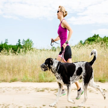 How To Combat A Dog Attack On The Run