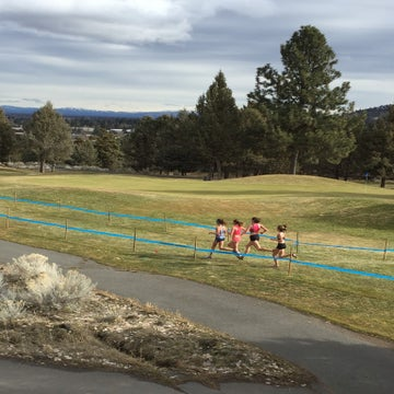 Gritty Runners Take On USATF Cross-Country Championships