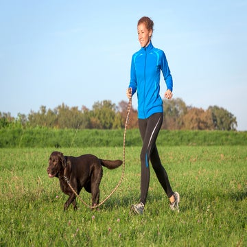 Try These 2 Training Tricks Before Running With Your Dog