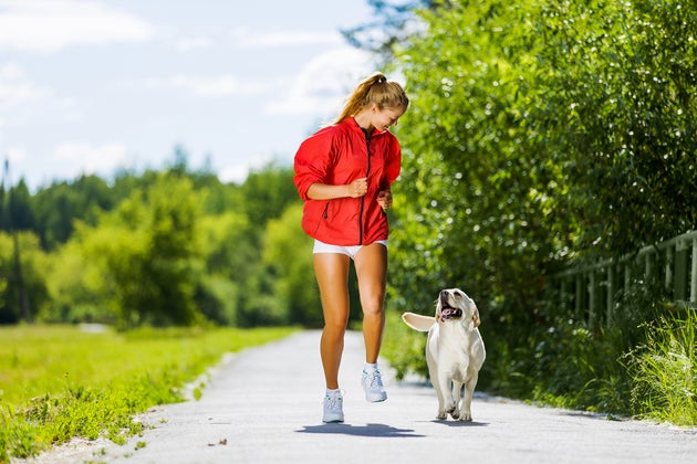 4 Expert Tips For Running With Your Pup
