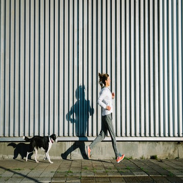4 Things To Know About Running With Your Dog In Hot Weather
