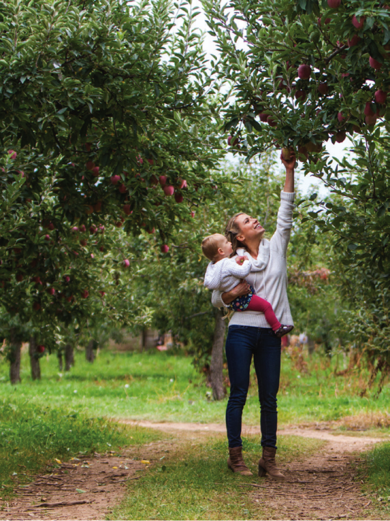 Elyse picking apples with her daughter, Lily, in Hood River, Ore.