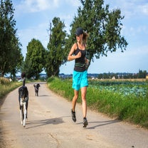 The Perfect Playlist For Running With Your Dog