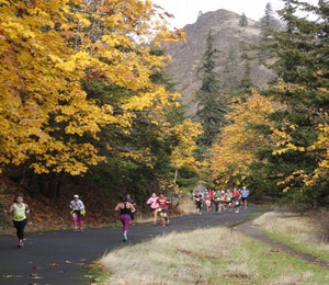 The Best Races For Fall Foliage