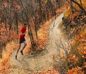 A Thanksgiving Run In Adirondack Park