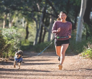 The Best Gear To Use While Running With Dogs