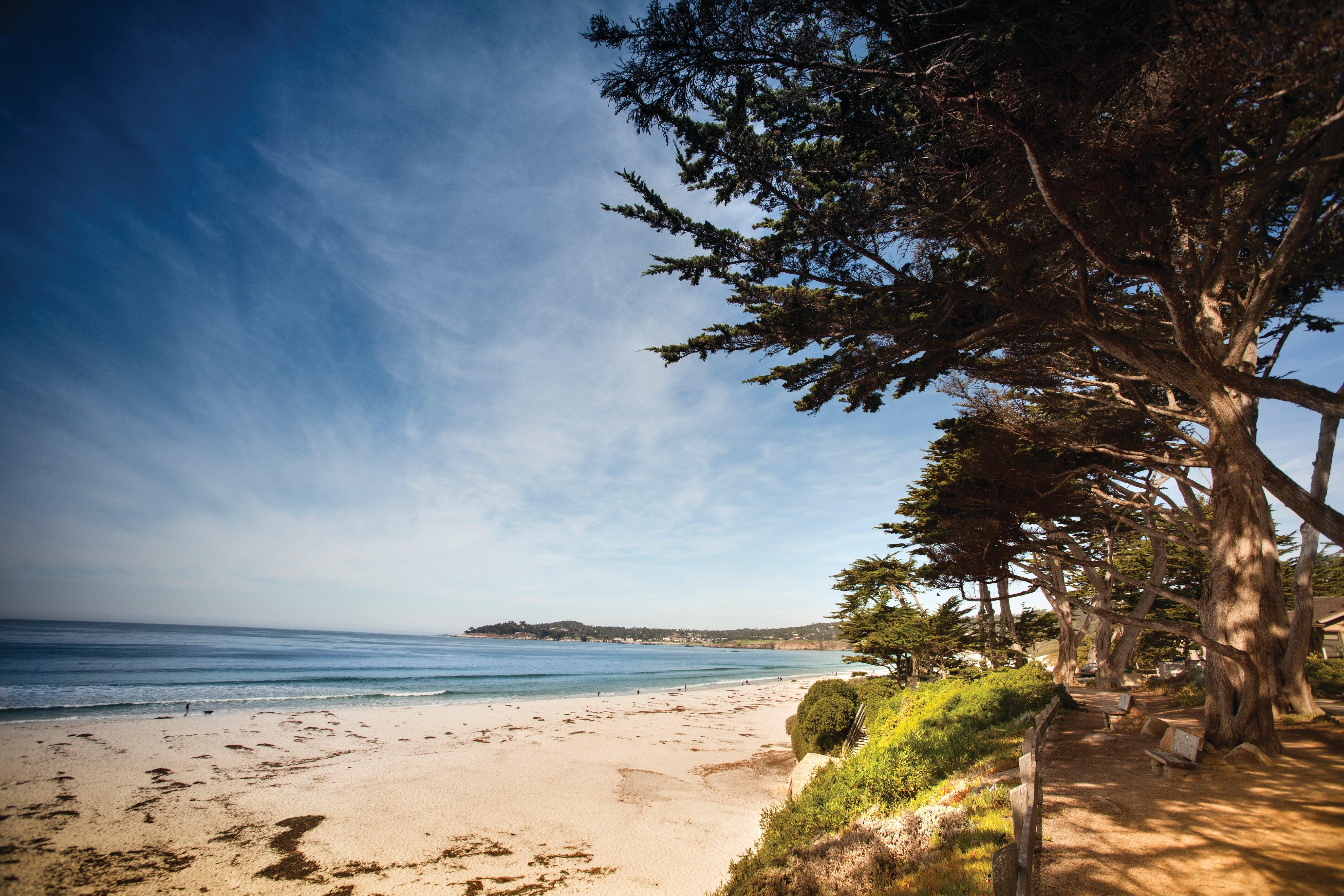 Run by the Pacific Ocean coastline in Carmel, California .