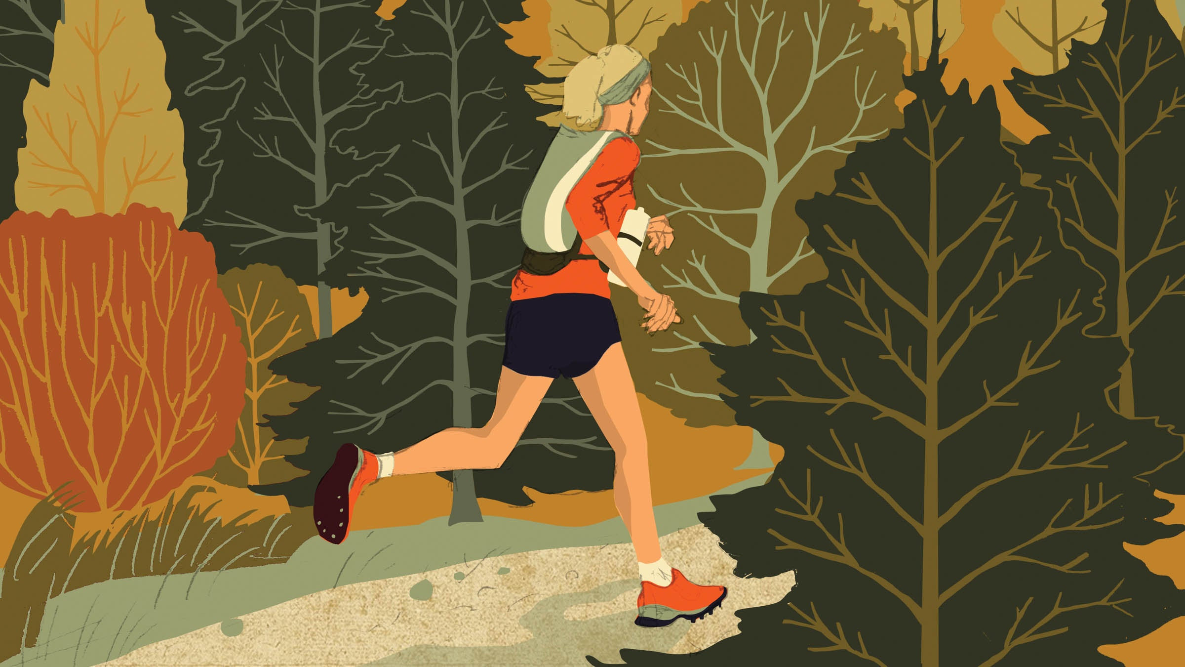 The World of Trail Running - cover
